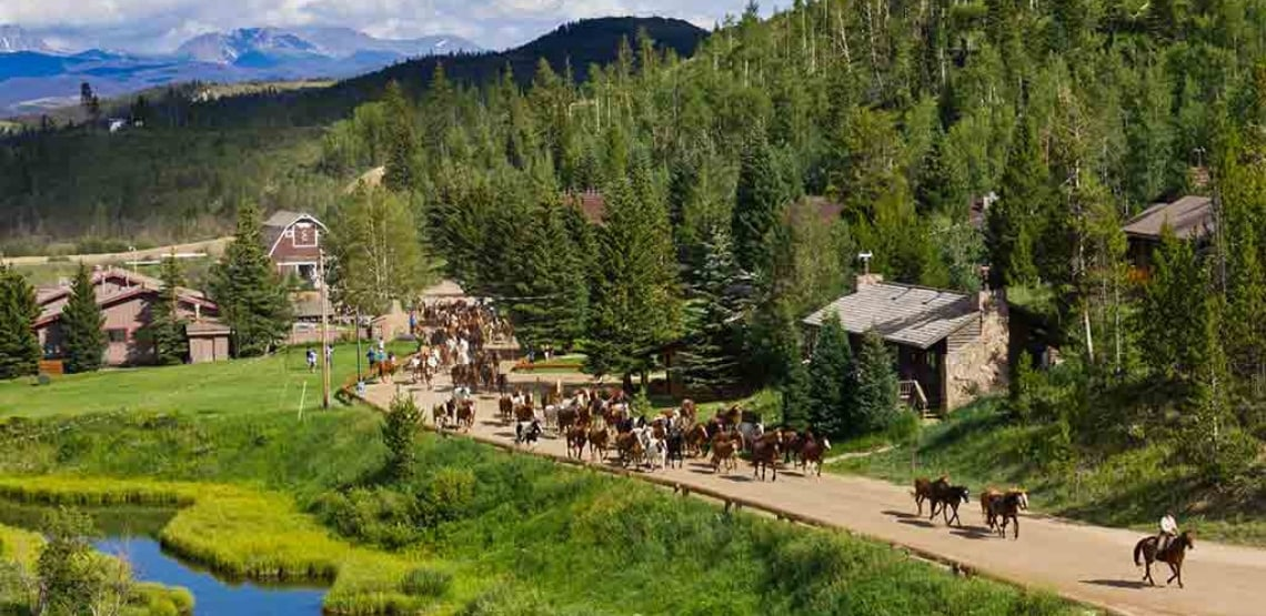 Experience the Wild West by Staying at a Dude Ranch