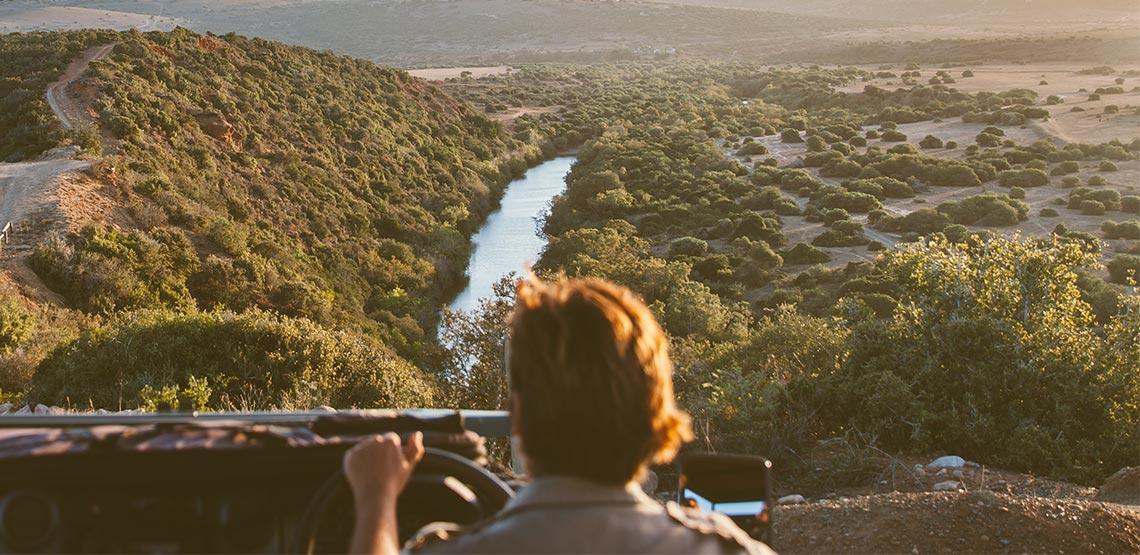 Wild Animals & Wild Sights: How to Plan a Kruger National Park Safari